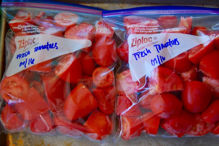 Top view of bagged, flash-frozen, fresh tomatoes ready for the freezer. Easy way to preserve tomatoes.