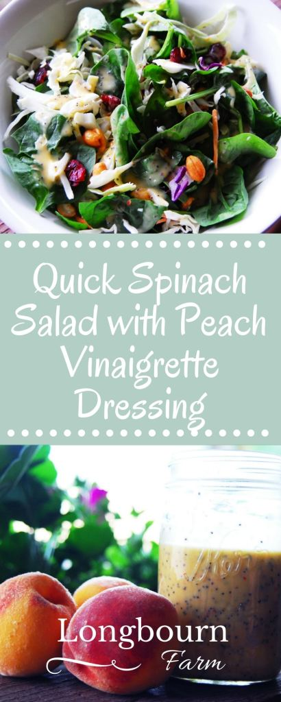 This quick spinach salad is so easy to throw together and always a huge hit! Paired with this peach vinaigrette dressing, it's to die for. The creamy dressing paired with the subtle peach flavor is hard to beat!