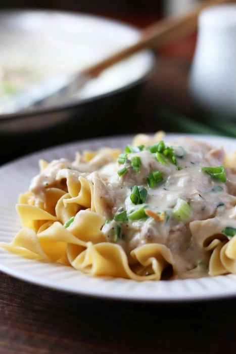 Creamy Chicken Over Noodles!