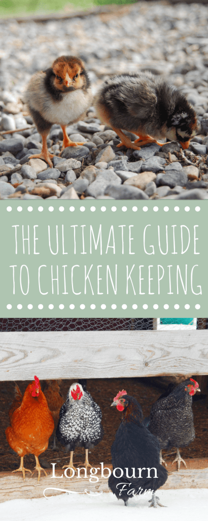 When you're interested in keeping chickens, it can be hard to find accurate and reliable information. The Ultimate Guide to Chicken Keeping is the answer! Everything from raising chicks, to laying hens, to meat birds. This eBook covers nutrition, housing, health and disease and more!
