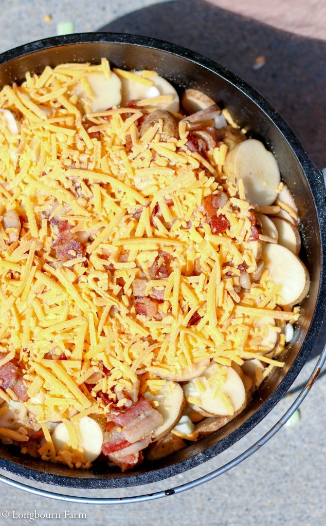 Dutch Oven Potatoes!