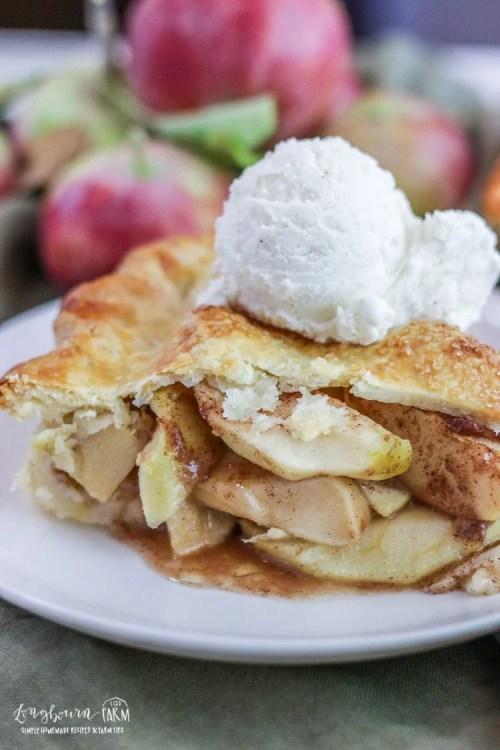 Close-up of homemade apple pie slice.