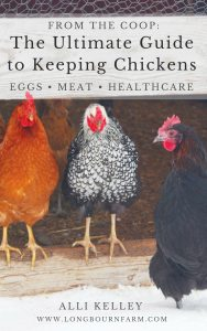 Cover of the ebook, The Ultimate Guide to Keeping Chickens