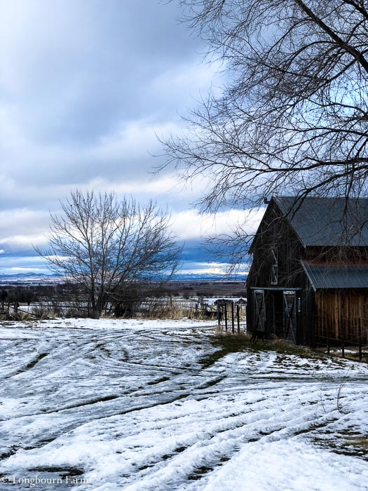 Old wooden barn on a stormy morning with icy snow on the ground.