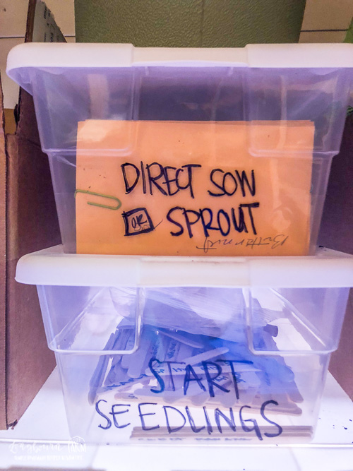 Seed packages sorted into two plastic containers based on if they are direct sow or sprout or seed to be started as seedlings.
