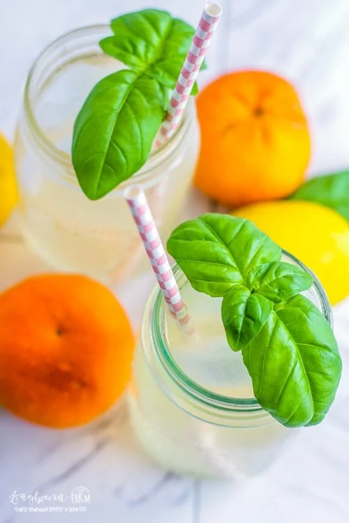 Top down view of a glass of citrus lemonade topped with a basil sprig and a straw.