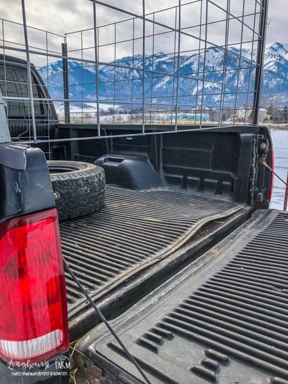 Space under the tailgate in the DIY livestock hauler.