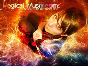 Magical Mushrooms by longbull
