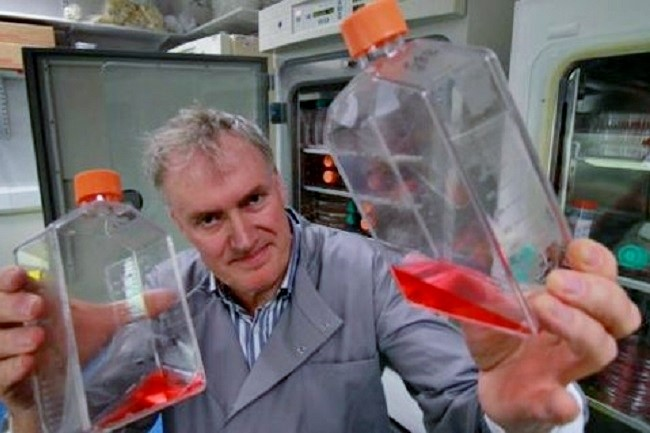 Lead scientist Luke O'Neill, with flasks of inflamed white blood cells.