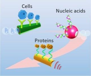 Sensing nanodocs.