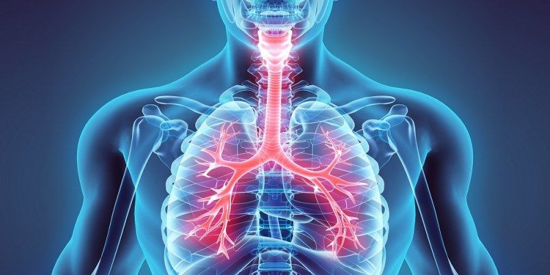Senolytics are a promising treatment for the respiratory diseases of aging.