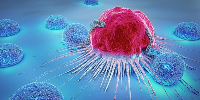 immune system role in cancer