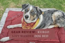 Gear Review: Kurgo Loft Wander Dog Bed. This travel dog bed is an essential part of our camping dog gear.   Long Haul Trekkers