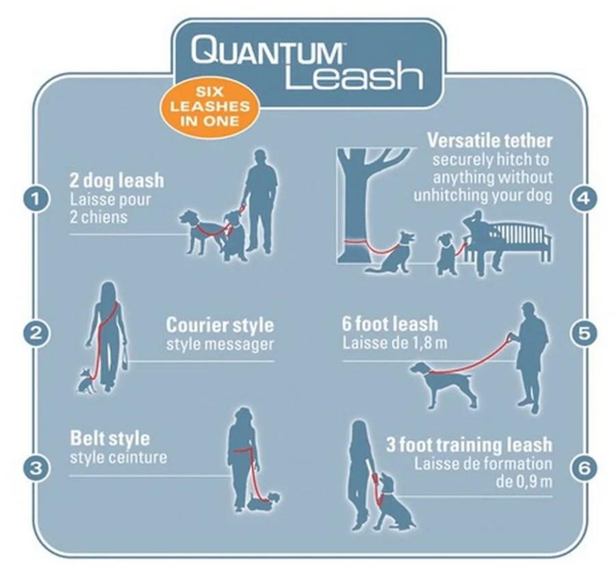 Quantum Leash