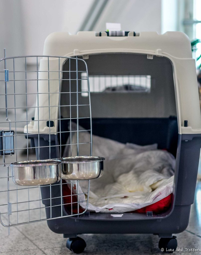 Flying internationally with a dog requires water and food bowl attachments. how to fly internationally with a dog
