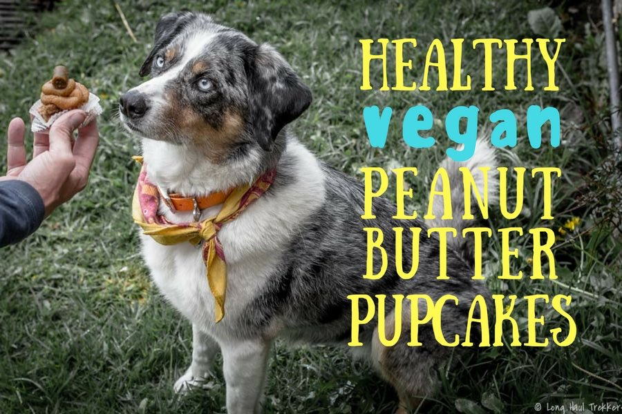 Healthy Vegan Peanut Butter Pupcakes | Long Haul Trekkers