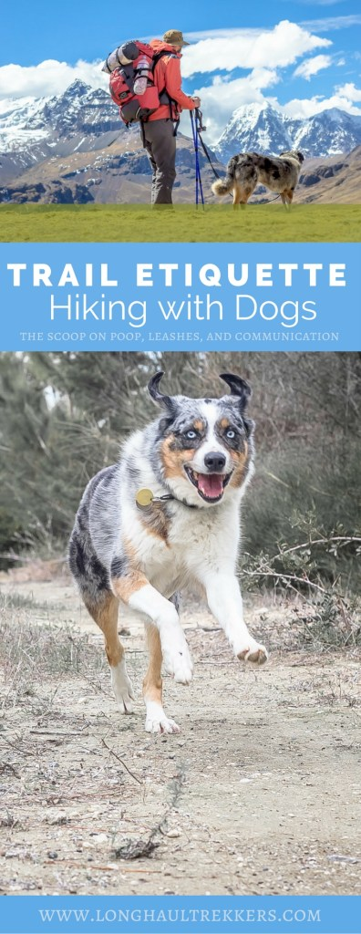 Off-leash hiking with our dogs is great fun, and by following this set of trail etiquette guidelines, we can ensure that all users have a safe and positive time in the outdoors.