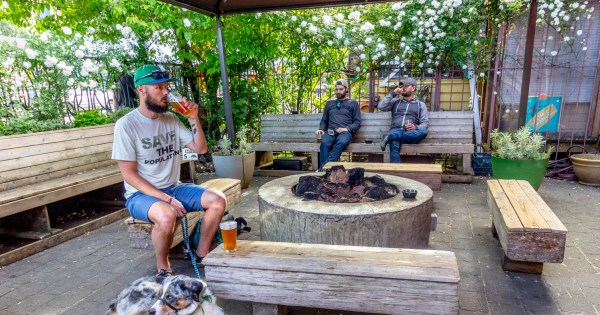 Dog-Friendly Portland, Oregon: Our Favorite Places to Sit, Stay...