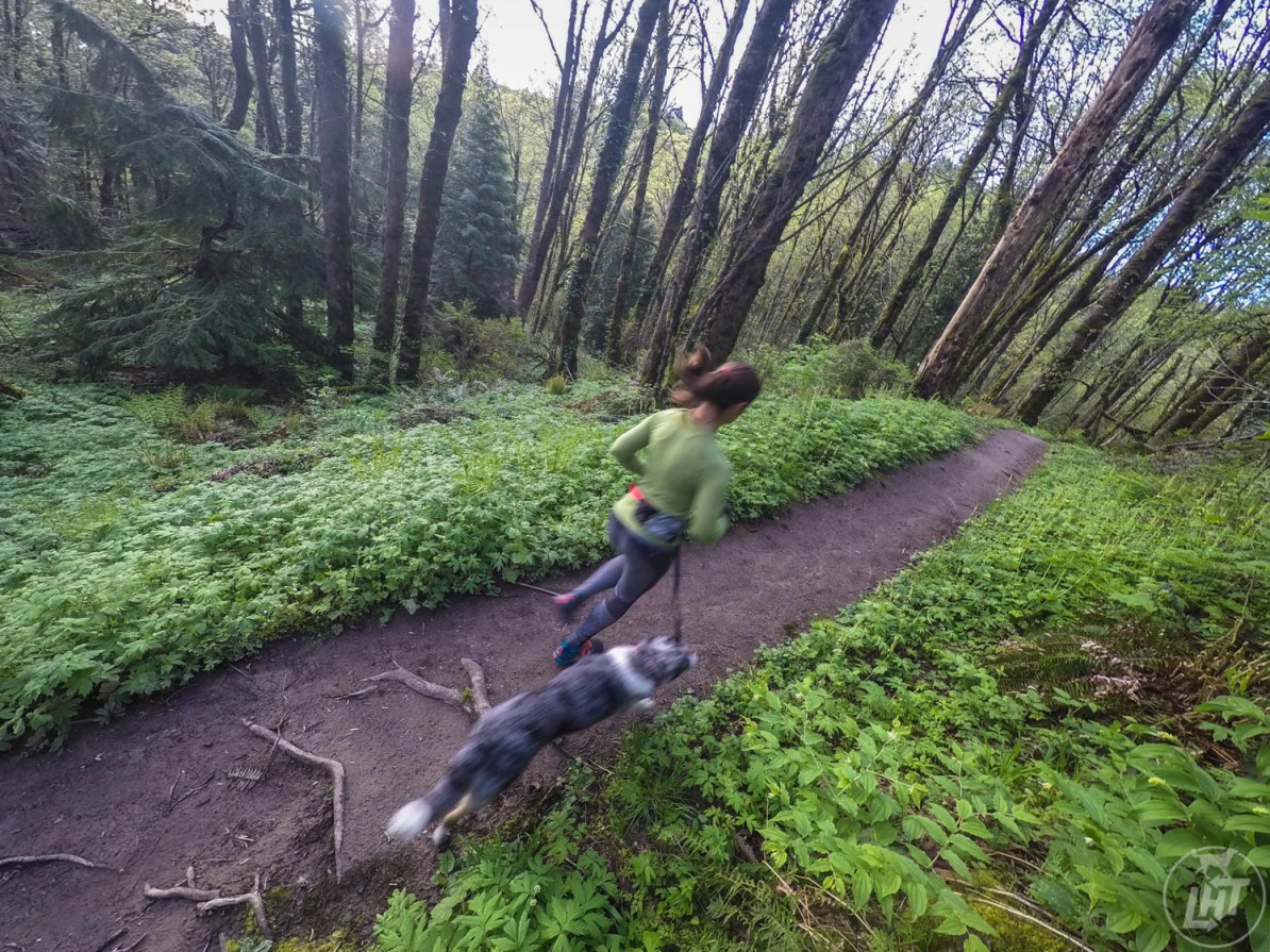 Portland's Forest Park is one of the largest urban parks in the United States with over 70 miles of trails.
