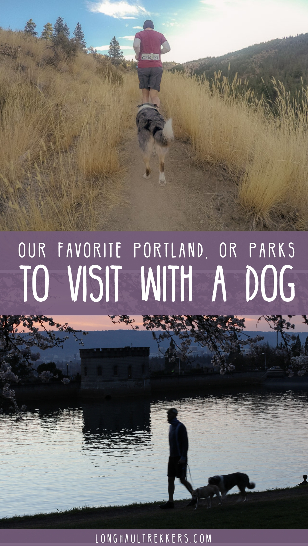 Portland has parks just about everywhere you look, so we picked a few of our favorites to visit with a dog.