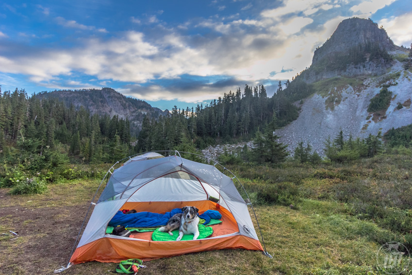 Need ideas for getting outside with your dog? The 52-day adventure dog challenge will get you outdoors for an entire year. Try an overnight backpacking trip.