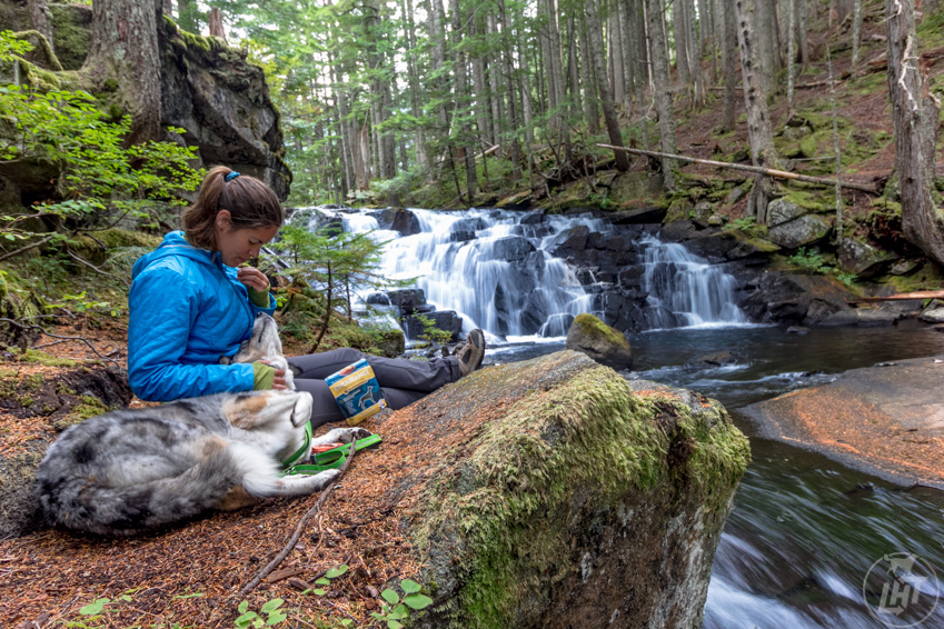 Go out on a solo trip with just you and your dog. Discover the bonding potential with such an experience.