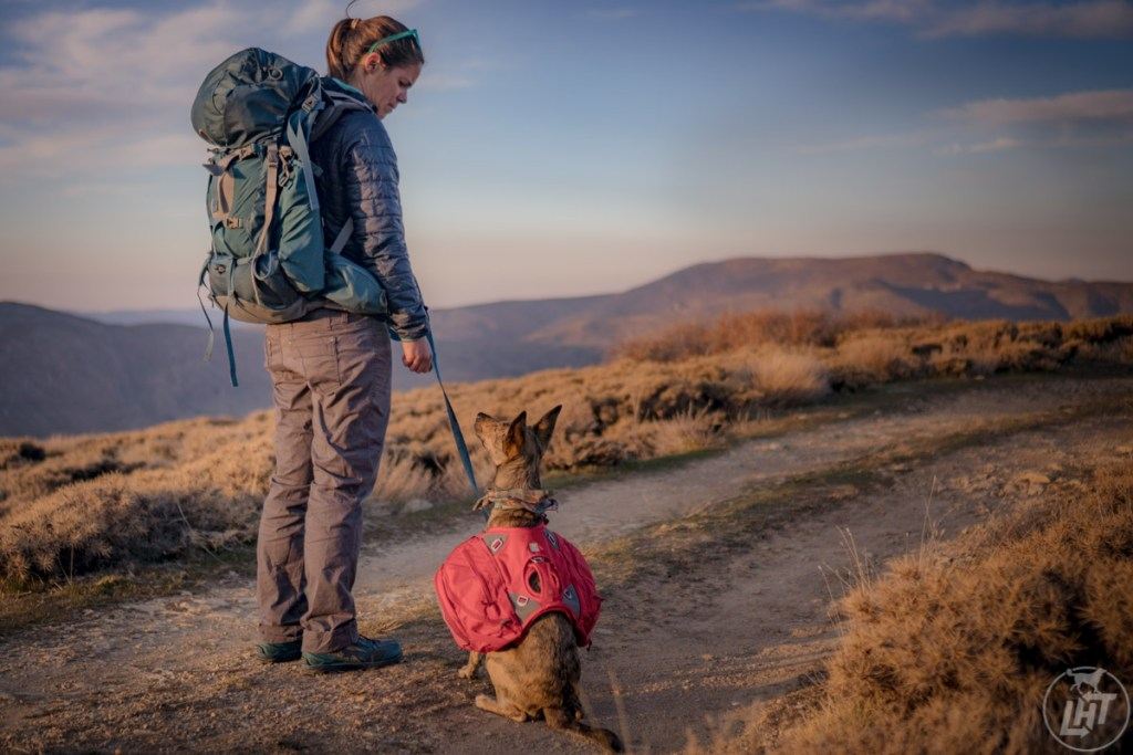 We're all about the hands-free leashes. Whether we're hiking, running, or backpacking, hands-free is where it's at.