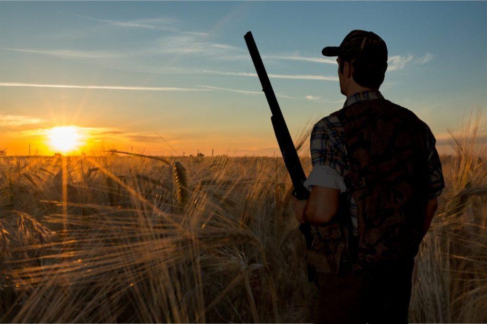 Hunting, Hunter, Shotgun, clays
