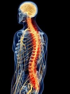 nerve scan chiropractor Longmont