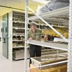 Giá kệ lưu trữ chuyên ngành bảo tàng văn hóa nghệ thuật