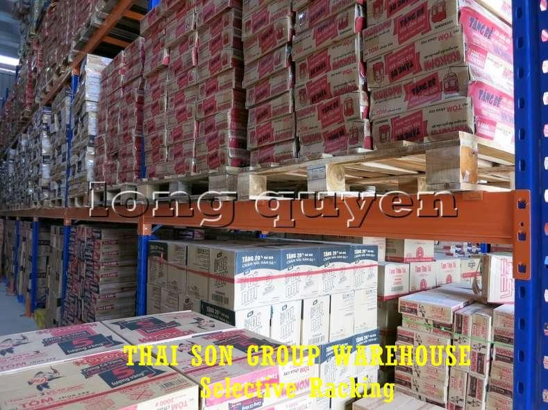 Kệ chứa hàng pallet lựa chọn Selective Pallet Rack kho Thái Sơn Group (7)
