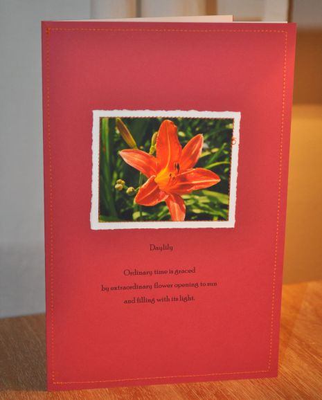 day lily Paper Stitches