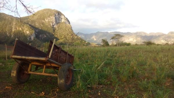 Walking around the beautiful countryside at Vinales was one of our Cuban highlights.