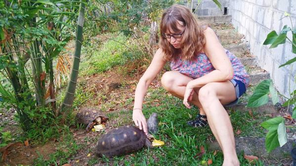 Vanessa feeding the two tortoises in the garden