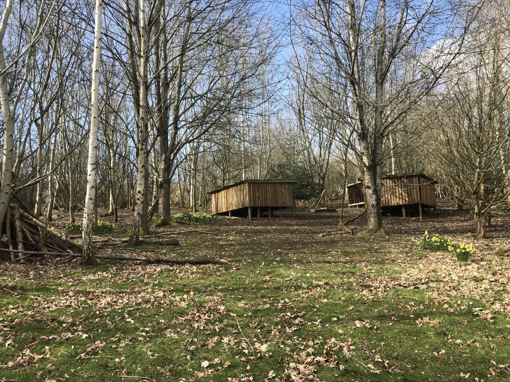Bivvy Shelters in the Woodland