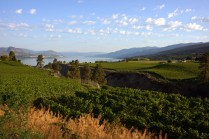 Penticton: Orchards along the Trans-Canada Trail