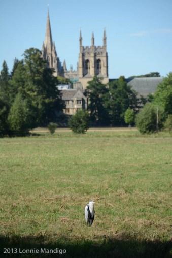 Christ Church Meadows 20130902-15