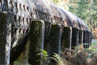 Part of the Toketee Falls hydroelectric project