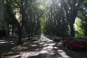 The world's most beautiful street