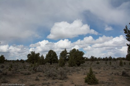 Eastern Oregon Scenery