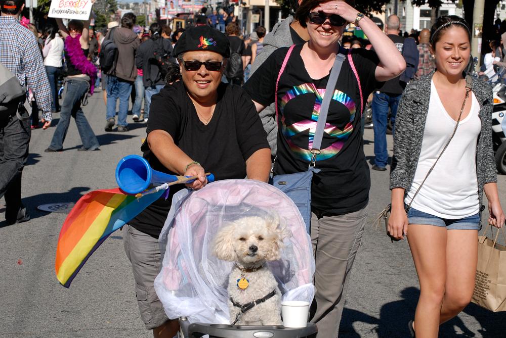 Dyke March babydog