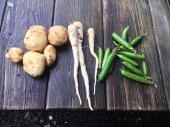 Fresh from the garden - organic homegrown produce