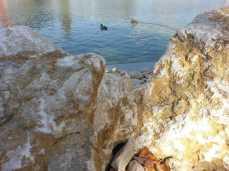 mopana-white-beautiful-rocks-04