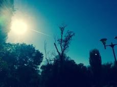 mopana-airplane-on-the-sky-05