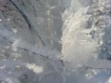 mopana-little-snowflake-01