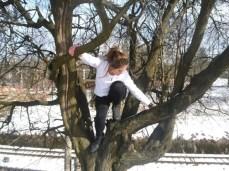 climb-trees-07