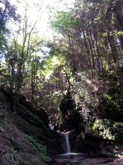 mopana-Seven-Ladders-Canyon-08