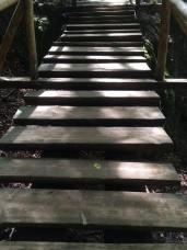 mopana-Seven-Ladders-Canyon-22