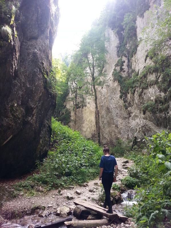 mopana-Seven-Ladders-Canyon-54