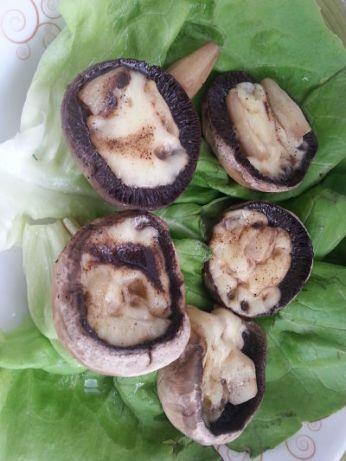mopana-champignon-mushrooms-12